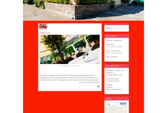 Webseite mit WordPress